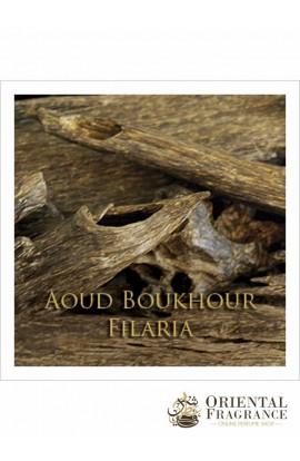 Abdul Samad Al Qurashi Aoud Boukhour Filaria
