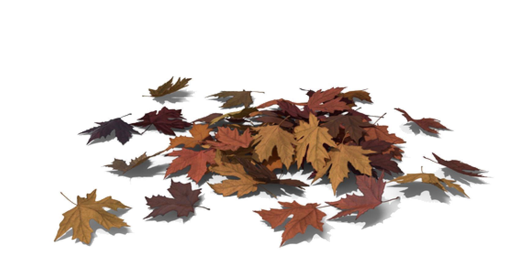 feuille-pile